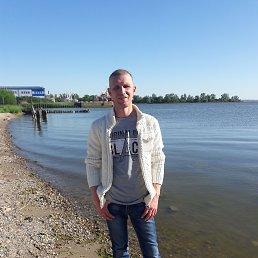 Вадим, 37 лет, Калининград
