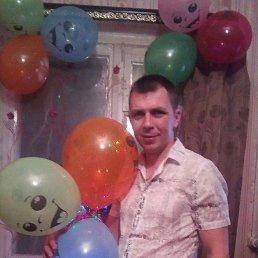 Александр, 34 года, Вязьма