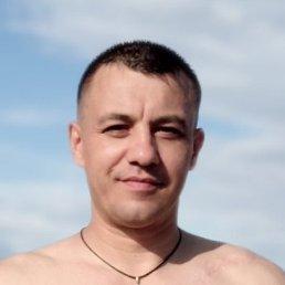 Антон, 40 лет, Бердянск