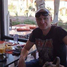Максим, 41 год, Борисполь