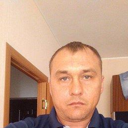 Миша, 39 лет, Ставрополь