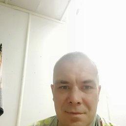 Андрей, 44 года, Зеленодольск