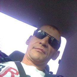 Алексей, 37 лет, Кемерово