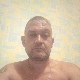 Денис, 41 год, Кемерово