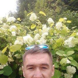 Евгений, 41 год, Таганрог