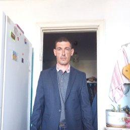 Юрий, 38 лет, Пласт