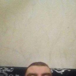 Николай, 37 лет, Истра