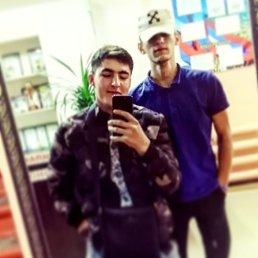 Андрей, Красноярск, 19 лет