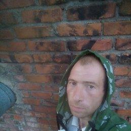 Владимир, 28 лет, Стодолище