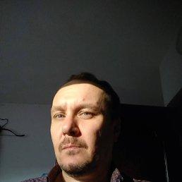 Роман, 47 лет, Сочи