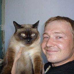 Антон, 36 лет, Новая Ладога