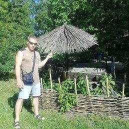 Антон, 29 лет, Омск