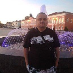 Юрий, 34 года, Старая Русса