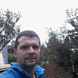 Михаил, 34 года, Подольск