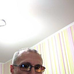 Евгений, 43 года, Электросталь