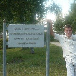 олег, 37 лет, Белгород