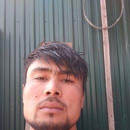 Азамат, 26 лет, Махачкала