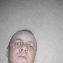 Алексей, 36 лет, Мелитополь