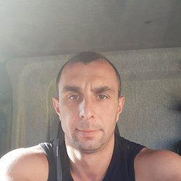 Алекс, 33 года, Новомосковск