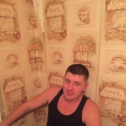 Андрей, 31 год, Клин