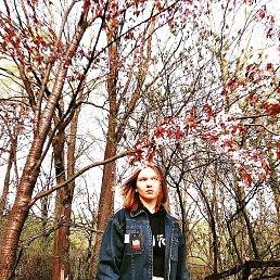 Настя, 26 лет, Тула