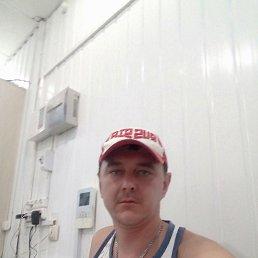 Алексей, 37 лет, Куса