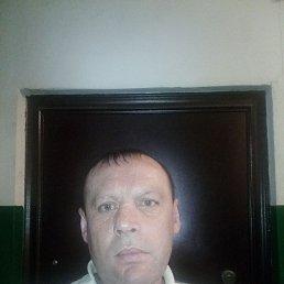 Дмитрий, 44 года, Хабаровск