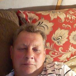 Андрей, 56 лет, Красногорск