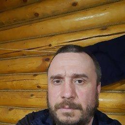 Владимир, 44 года, Тюмень