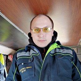 Тигер, 32 года, Ровно
