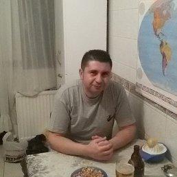 Алексей, Новосибирск