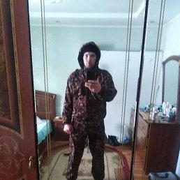 Алексей, 28 лет, Светлогорск