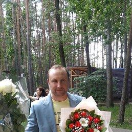 Антон, 36 лет, Лобня