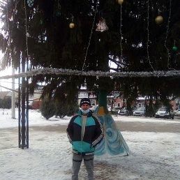 Евгений, 33 года, Белгород