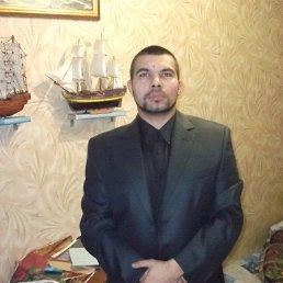 Алексей, 36 лет, Тула