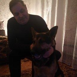 Андрея, 47 лет, Дмитров