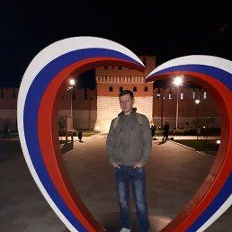 Александр, 36 лет, Тула
