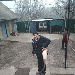 Вячеслав, 58 лет, Васильков