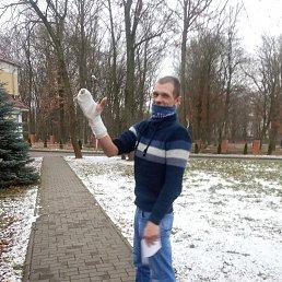 Сергей, 31 год, Калининград