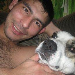Александр, 33 года, Красноярск