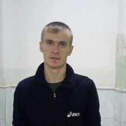 Владимир, Ульяновск, 29 лет