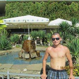 Александр, 32 года, Тюмень