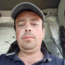 Николай, 38 лет, Кемерово