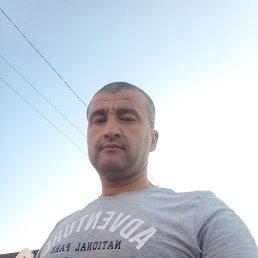 Амир, 37 лет, Владивосток