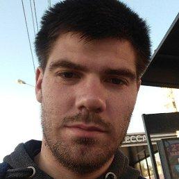 Илья, Ярославль, 29 лет