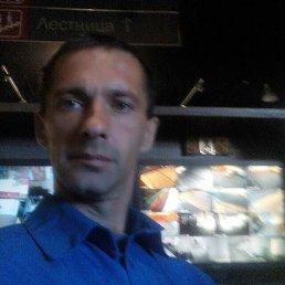 Николай, 43 года, Батайск