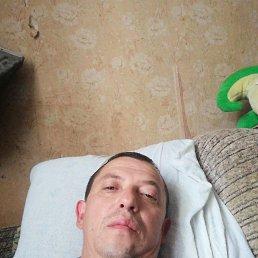 Анатолий, 43 года, Серпухов