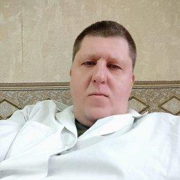 Денис, 44 года, Белгород