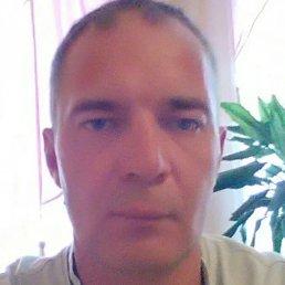 Максим, Курск, 50 лет