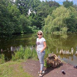 Наталья, 41 год, Калининград